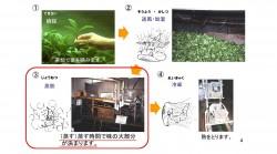 ★三喜有様 日本茶セミナー00041